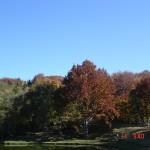 paesaggio in autunno