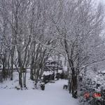 Il mio giardino quando nevica