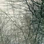 Uno scorcio tra la neve del lago Aracci