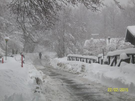 I temerari sfidano la neve.